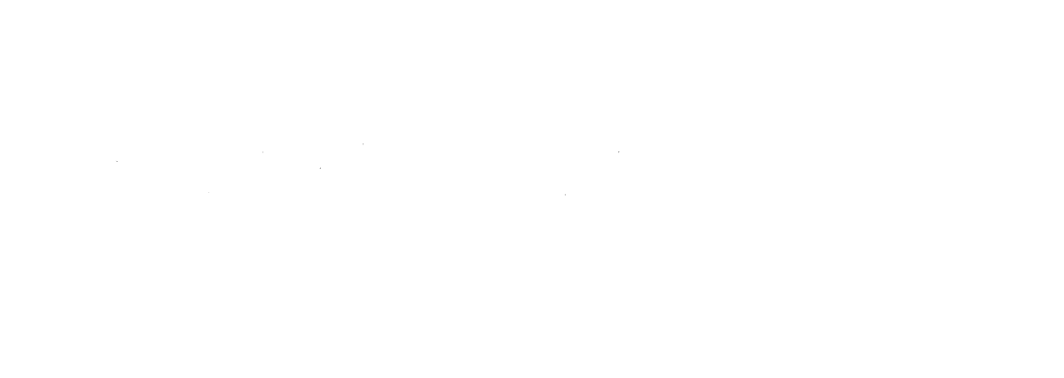 BlackOpalRose.Photography – Wedding Photography & Videography